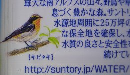 suntory_kibitaki